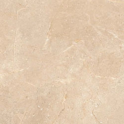 Floor Tiles for a Slick & Sophisticated Look For Your Home